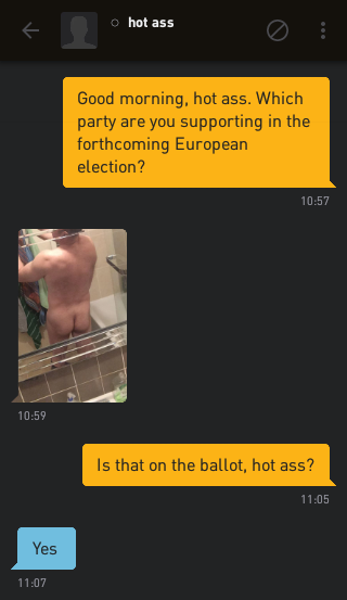 Me: Good morning, hot ass. Which party are you supporting in the forthcoming European election? hot ass: [a photo of his ass] Me: Is that on the ballot, hot ass? hot ass: Yes