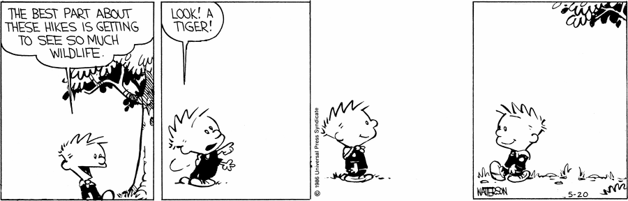 A Calvin and Hobbes strip. Panel 1: Calvin, walking through a forest, says 'THE BEST PART ABOUT THESE HIKES IS GETTING TO SEE SO MUCH WILDLIFE.' Panel 2: Calvin points at nothing in particular and says 'LOOK! A TIGER!'. Panel 3: Calvin smiles. Panel 4: Calvin walks away.