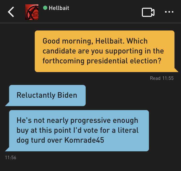 Me: Good evening, Hellbait. Which candidate are you supporting in the forthcoming presidential election? Hellbait: Reluctantly Biden Hellbait: He's not nearly progressive enough buy at this point I'd vote for a literal dog turd over Komrade45
