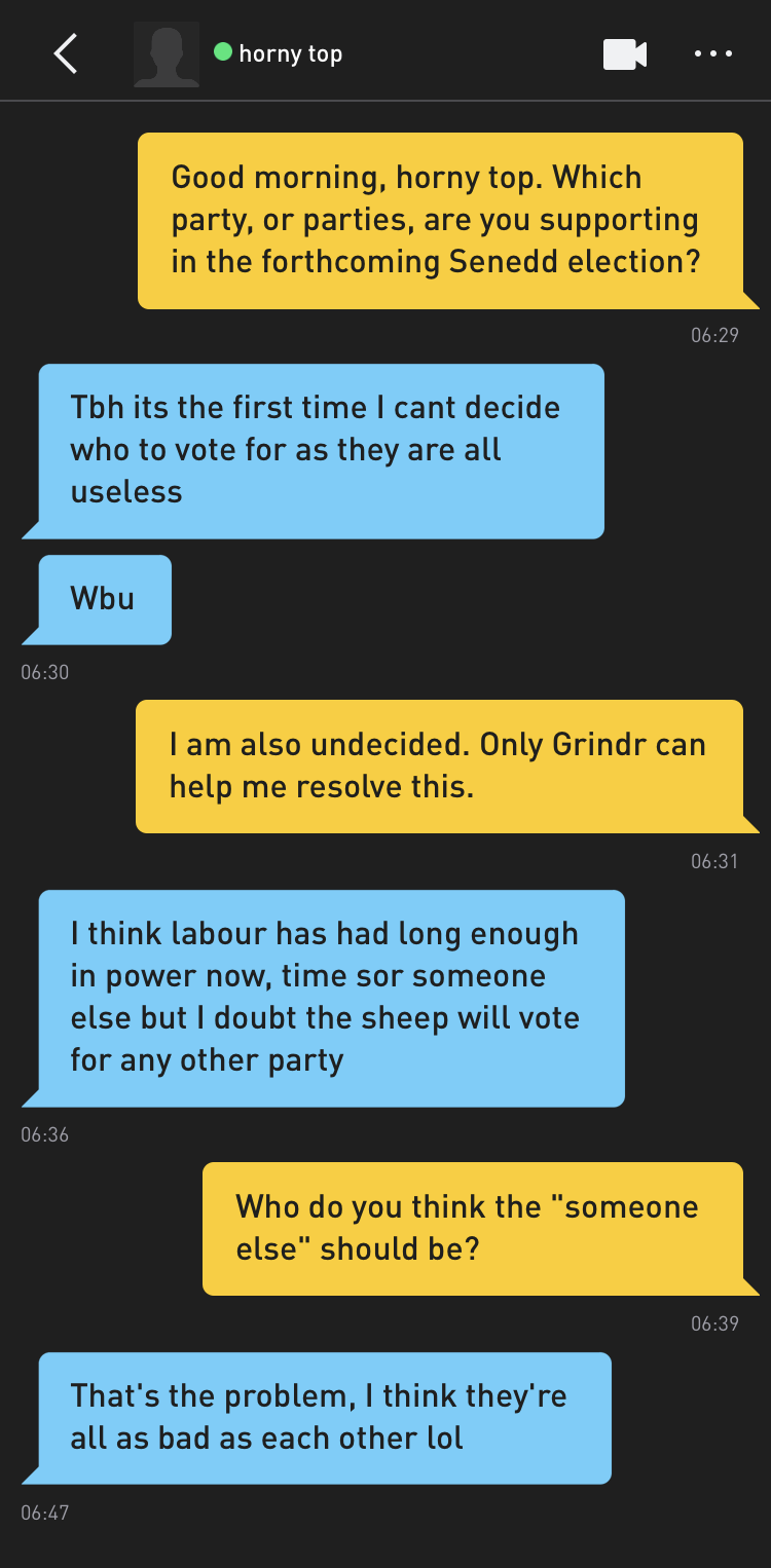 "Me: Good morning, horny top. Which party, or parties, are you supporting in the forthcoming Senedd election? horny top: Tbh its the first time I cant decide who to vote for as they are all useless horny top: Wbu Me: I am also undecided. Only Grindr can help me resolve this. horny top: I think labour has had long enough in power now, time sor someone else but I doubt the sheep will vote for any other party Me: Who do you think the ""someone else"" should be? horny top: That's the problem, I think they're all as bad as each other lol"