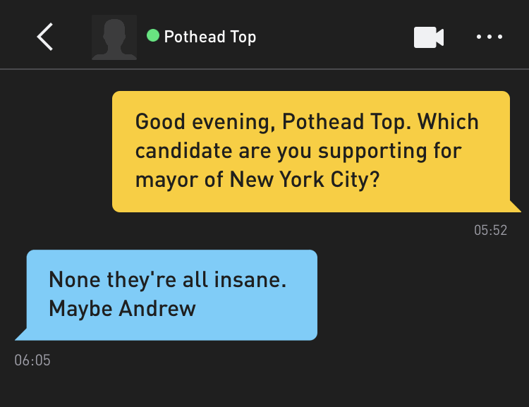 Me: Good evening, Pothead Top. Which candidate are you supporting for mayor of New York City? Pothead Top: None they're all insane. Maybe Andrew