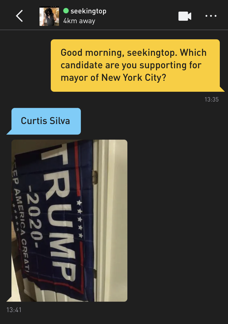 Me: Good morning, seekingtop. Which candidate are you supporting for mayor of New York City? seekingtop: Curtis Silva seekingtop: [photo of a TRUMP 2020 KEEP AMERICA GREAT banner, which could do with ironing]