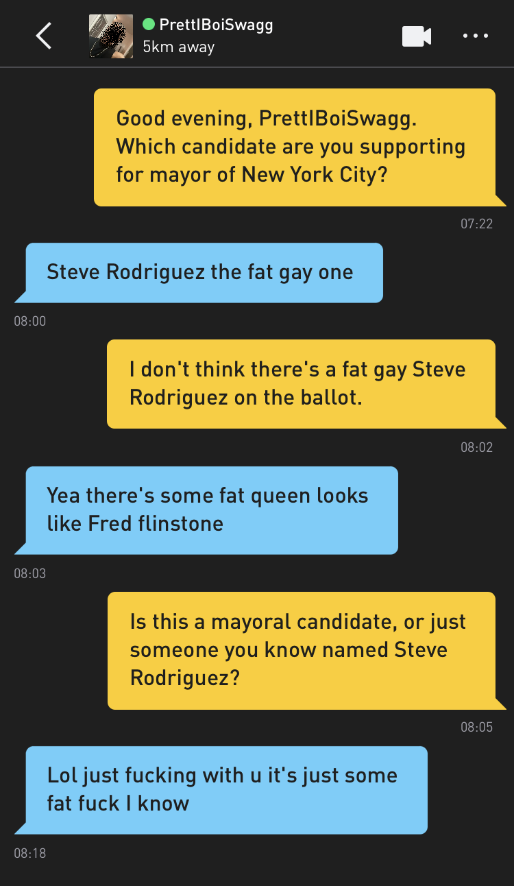 Me: Good evening, PrettIBoiSwagg. Which candidate are you supporting for mayor of New York City? PrettIBoiSwagg: Steve Rodriguez the fat gay one Me: I don't think there's a fat gay Steve Rodriguez on the ballot. PrettIBoiSwagg: Yea there's some fat queen looks like Fred flinstone Me: Is this a mayoral candidate, or just someone you know named Steve Rodriguez? PrettIBoiSwagg: Lol just fucking with u it's just some fat fuck I know