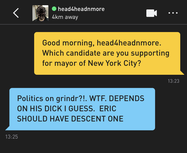 Me: Good morning, head4headnmore. Which candidate are you supporting for mayor of New York City? head4headnmore: Politics on grindr?!. WTF. DEPENDS ON HIS DICK I GUESS> ERIC SHOULD HAVE DESCENT ONE